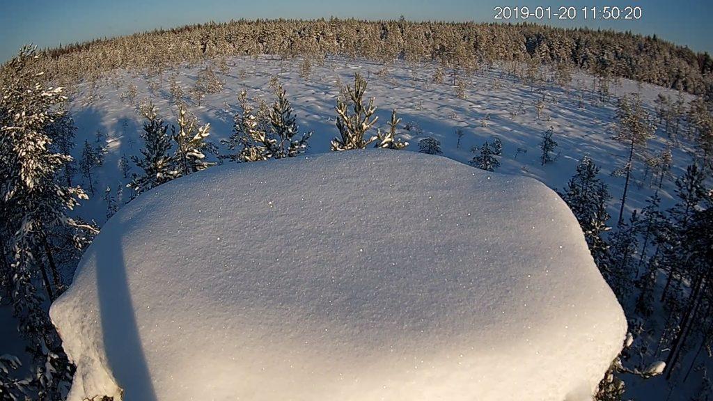 The new camera nest in Satakunta
